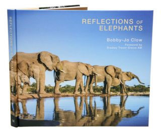 Reflections of elephants. Bobby-Jo Clow.
