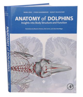 Anatomy of dolphins: insights into body structure and function. Bruno Cozzi.