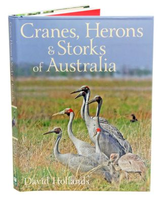 Cranes, herons and storks of Australia. David Hollands.