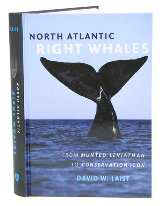 North Atlantic right whales: from hunted Leviathan to conservation icon