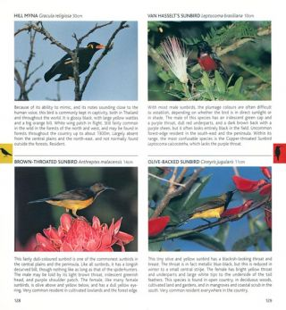 Pocket photoguide to the birds of Thailand.