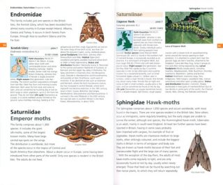 Field guide to the moths of Great Britain and Ireland.