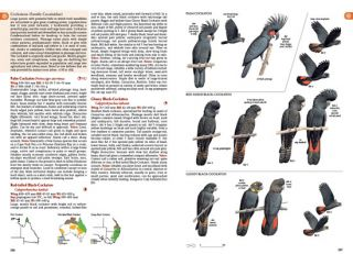ABG. The Australian Bird Guide and Birds of New Guinea. SPECIAL OFFER.