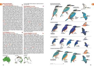 ABG. The Australian Bird Guide and HANZAB, volume seven. SPECIAL OFFER.