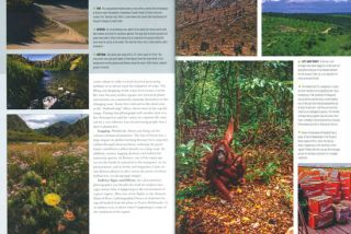 Conservation photography handbook.