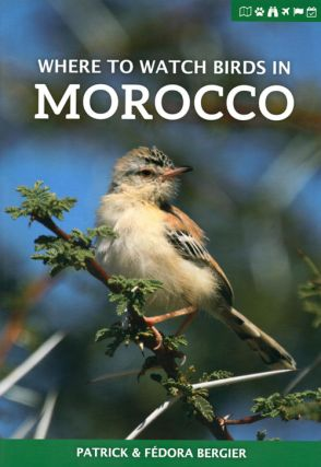 Where to watch birds in Morocco. Patrick Bergier, Fedora Bergier.