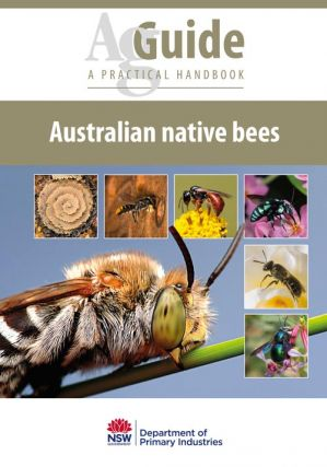 Australian native bees: a practical handbook. Anne Dollin