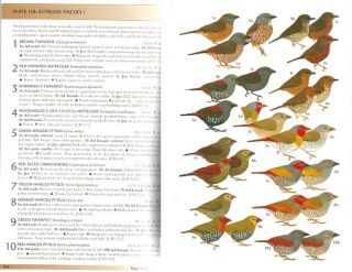 Field guide to the birds of Western Africa.