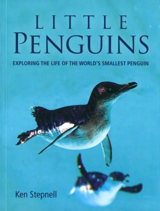 Little penguins: exploring the life of the world's smallest penguin