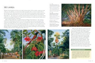 Marianne North: a very intrepid painter.