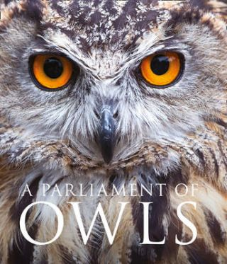 A parliament of owls. Mike Unwin, David Tipling
