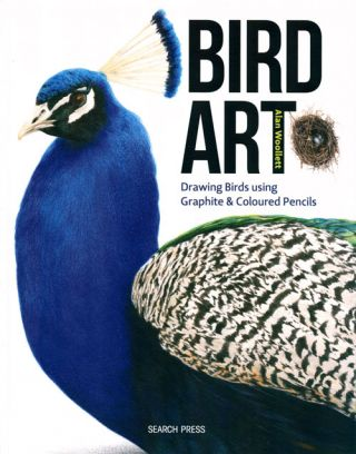 Bird art: drawing birds using graphite and coloured pencils. Alan Woollett.