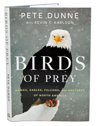 Birds of prey: hawks, eagles, falcons and vultures of North America
