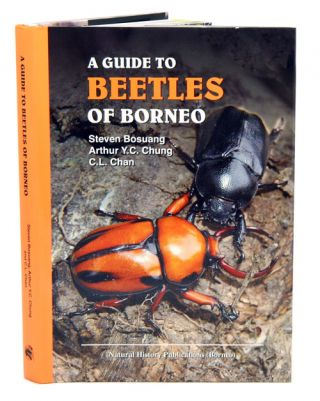 A guide to beetles of Borneo.
