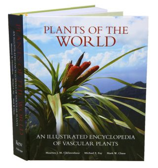 Plants of the world: an illustrated encyclopedia of vascular plant families.