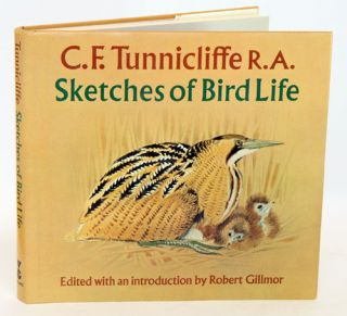 Sketches of bird life. C. F. Tunnicliffe.