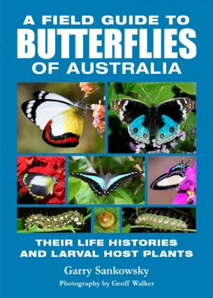 A field guide to butterflies of Australia: their life histories and larval host plants