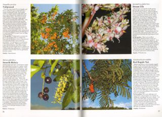 Australian rainforest plants [volume one]: in the forest and in the garden.