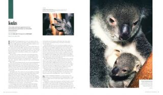 Australia gone wild: an anthology of the best nature stories from Australian Geographic.