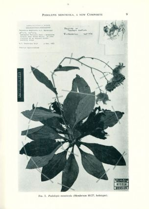 Contributions from the Queensland Herbarium, numbers 1-19.
