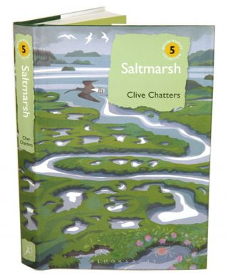 Saltmarsh. Clive Chatters