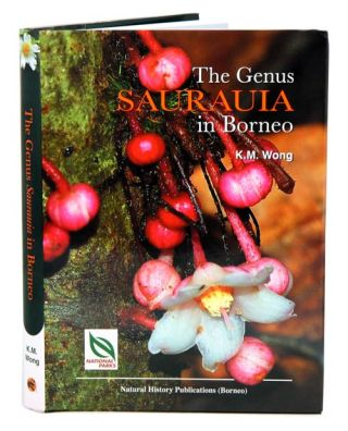 The Genus Saurauia in Borneo
