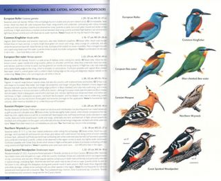 Birds of the Canary Islands.