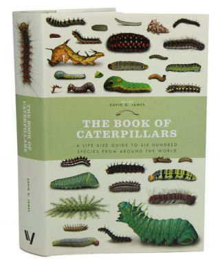 The book of caterpillars: a life-size guide to six hundred species from around the world. David G. James.