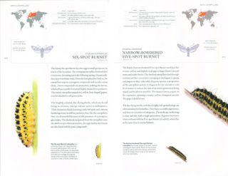 The book of caterpillars: a life-size guide to six hundred species from around the world.