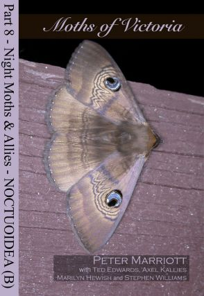 Moths of Victoria: part eight, Night moths and allies Noctuoidea (B