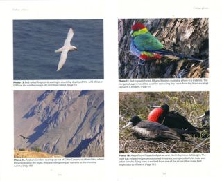 Birds in their habitats: journeys with a naturalist.