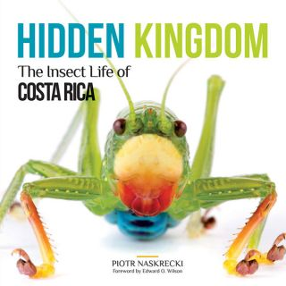Hidden kingdom: the insect life of Costa Rica. Piotr Naskrecki, Edward O. Wilson.