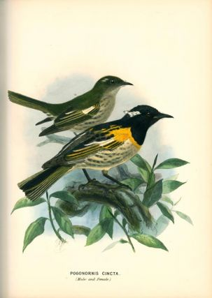 A history of the birds of New Zealand.