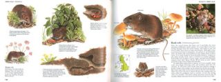 Field guide to the animals of Great Britain.