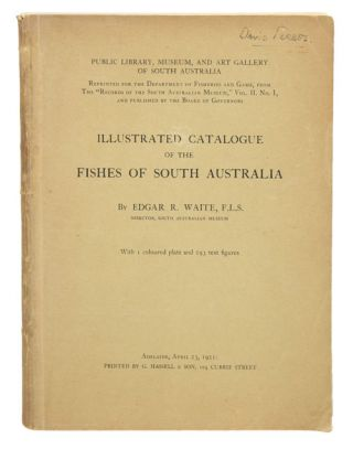 Illustrated catalogue of the fishes of South Australia. Edgar R. Waite.