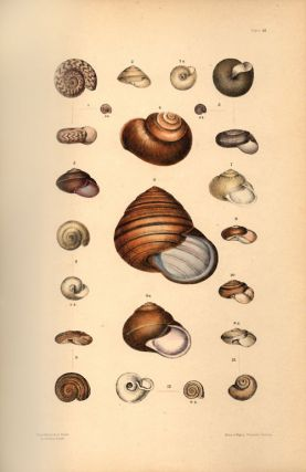 A monograph of Australian land shells.