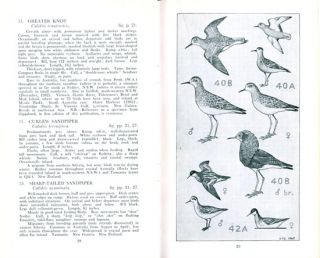 Field guide to the waders.