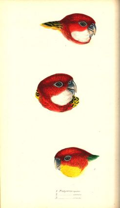 A synopsis of the birds of Australia, and the adjacent islands.