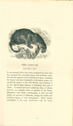 The tower menagerie: comprising the natural history of the animals contained in that establishment; with anecdotes of their characters and history.