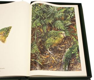 Jewels of nature: the parrots, volume one [all published].