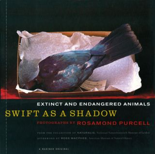 Swift as a shadow: extinct and endangered animals. Rosamond Purcell