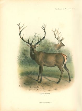 The Deer of all lands: a history of the family Cervidae living and extinct.