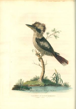 Journal of a voyage to New South Wales, with sixty five plates of non descript animals, birds, lizards, serpents, curious cones of trees and other natural productions.