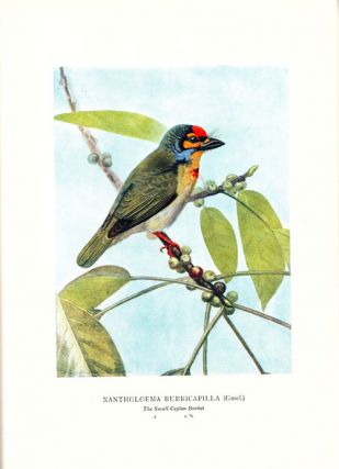 Coloured plates of the birds of Ceylon, with a short description of each bird by W. E. Wait.