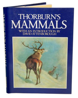 Thorburn's mammals. Iain Bishop, David Attenborough