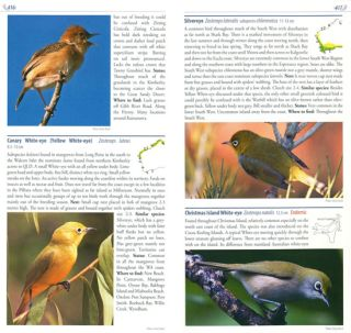 Birds of Western Australia: field guide.