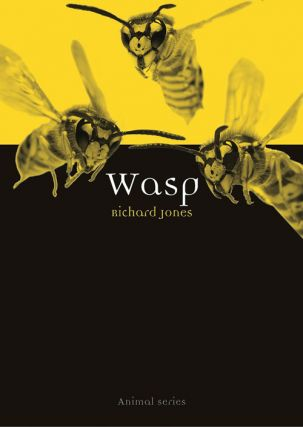 Wasp. Richard Jones