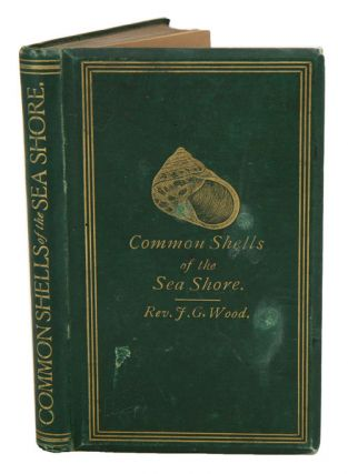 The common shells of the sea-shore. J. G. Wood