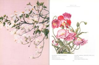 Contemporary botanical artists: the Shirley Sherwood collection.