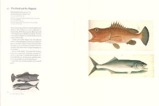 Mark Catesby's Natural history of America: the watercolours from the Royal Library, Windsor Castle.